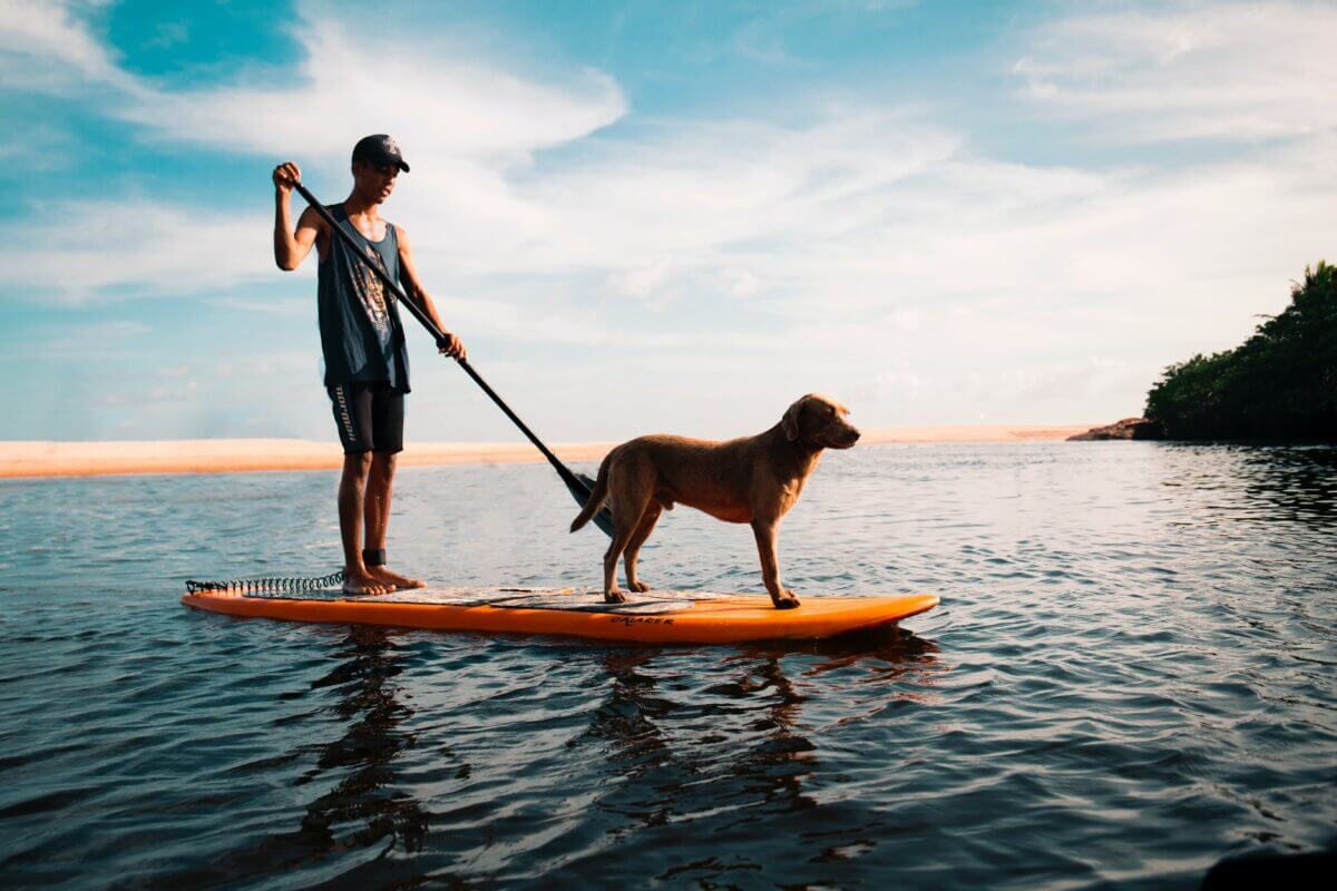 how to choose your first paddle board
